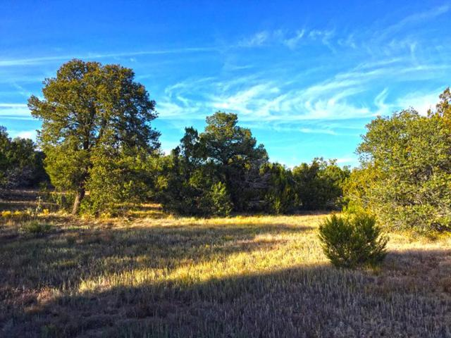0 Oakwood Loop, Tajique, NM 87016 (MLS #878520) :: Campbell & Campbell Real Estate Services