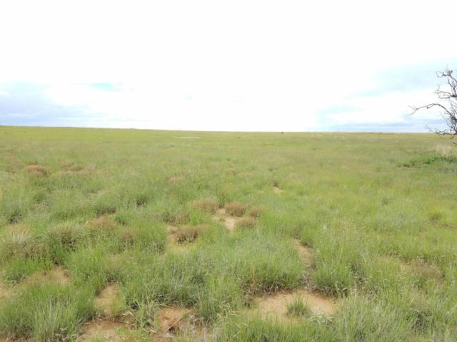 Highway 542, Mountainair, NM 87036 (MLS #880880) :: Campbell & Campbell Real Estate Services