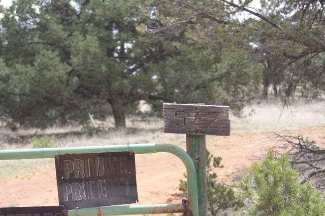 542 Pine Meadows Unit 4, Ramah, NM 87321 (MLS #883429) :: The Bigelow Team / Red Fox Realty