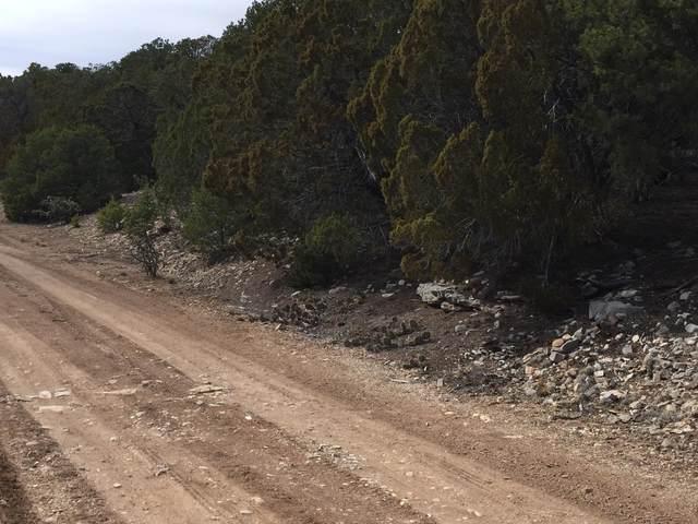 215 Five Hills (L15,B5,Fh) Drive, Tijeras, NM 87059 (MLS #885170) :: The Bigelow Team / Red Fox Realty
