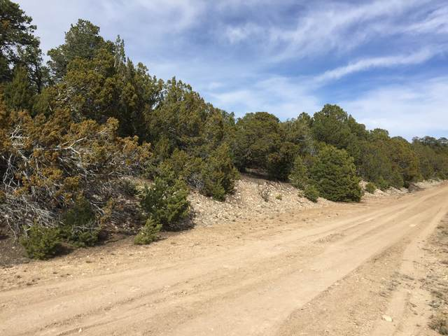 8 Enchantment View (L4,B6,Fh), Tijeras, NM 87059 (MLS #885189) :: Keller Williams Realty
