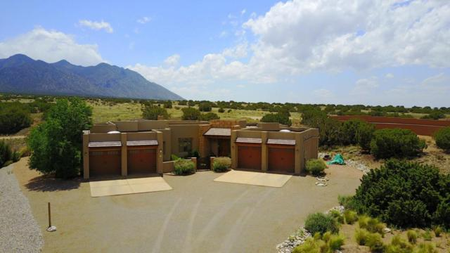 31 N Apache Mesa Road, Placitas, NM 87043 (MLS #891762) :: Campbell & Campbell Real Estate Services