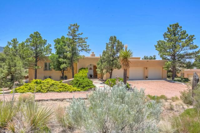 171 Big Horn Ridge Drive NE, Albuquerque, NM 87122 (MLS #893538) :: Your Casa Team