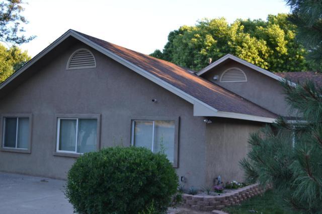 20 Silver Hills Road SE, Albuquerque, NM 87123 (MLS #893580) :: Your Casa Team