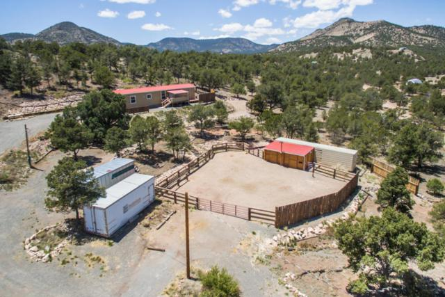 28 Log Cabin, Datil, NM 87821 (MLS #893695) :: Campbell & Campbell Real Estate Services