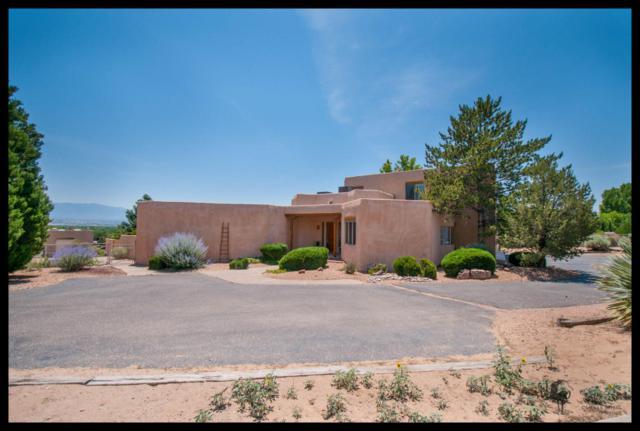 285 Ashley Lane, Corrales, NM 87048 (MLS #894228) :: Rickert Property Group
