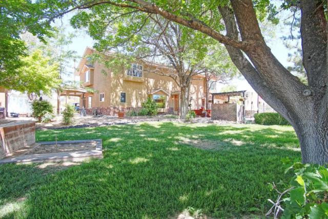 763 Applewood Road, Corrales, NM 87048 (MLS #894621) :: Rickert Property Group