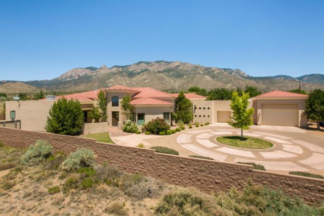 11821 Modesto Avenue NE, Albuquerque, NM 87122 (MLS #894944) :: Your Casa Team