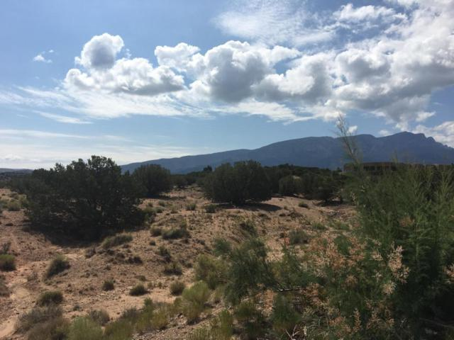 Anasazi Meadows Court, Placitas, NM 87043 (MLS #897263) :: Campbell & Campbell Real Estate Services