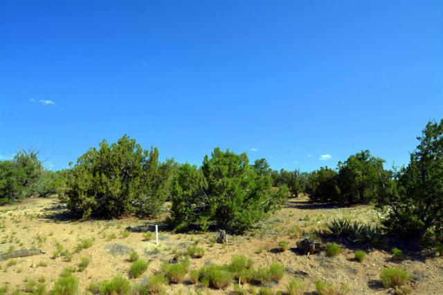15 Blue Corn Court, Sandia Park, NM 87047 (MLS #897613) :: Campbell & Campbell Real Estate Services