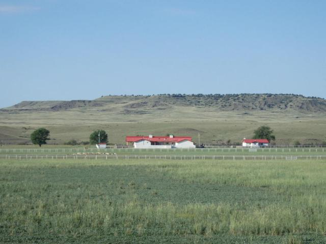 High Hope Ranch, Springer, NM 87747 (MLS #897821) :: Campbell & Campbell Real Estate Services