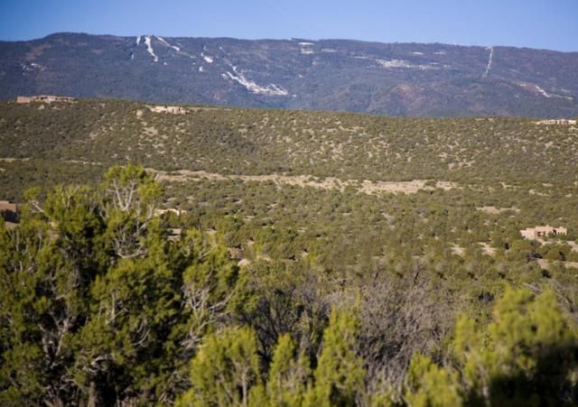 6 Cottonwood Trail, Sandia Park, NM 87047 (MLS #898113) :: Will Beecher at Keller Williams Realty
