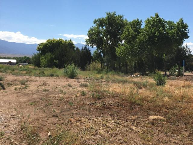 Guadalupe - Tract 32B1, Corrales, NM 87048 (MLS #899677) :: Rickert Property Group