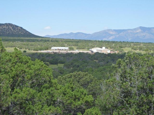 Mesa Draw Ranch, Mountainair, NM 87036 (MLS #899818) :: Campbell & Campbell Real Estate Services