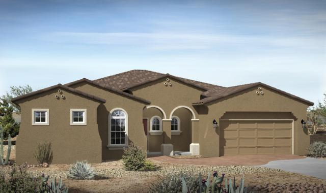 2329 Desert View Road NE, Rio Rancho, NM 87144 (MLS #900015) :: Campbell & Campbell Real Estate Services