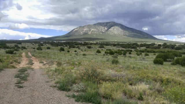 8 Entranosa Court, Edgewood, NM 87015 (MLS #900229) :: Campbell & Campbell Real Estate Services