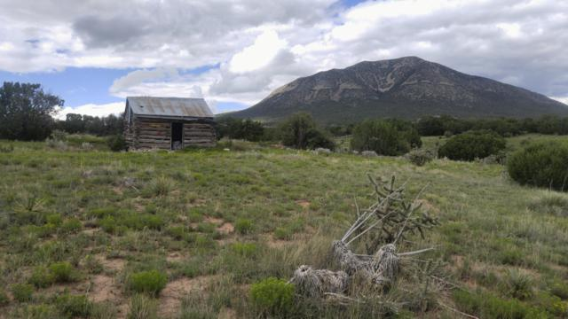 28 Raining Sky Drive, Edgewood, NM 87015 (MLS #900400) :: Campbell & Campbell Real Estate Services