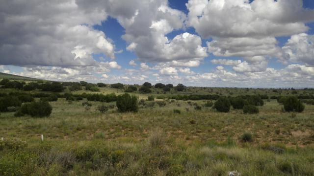16 Raining Sky Drive, Edgewood, NM 87015 (MLS #900412) :: Campbell & Campbell Real Estate Services