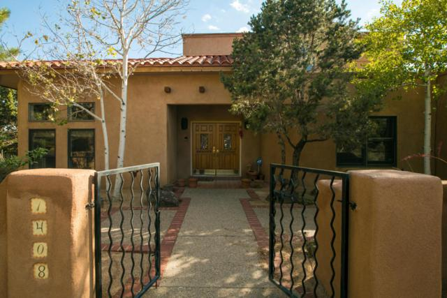 1408 Bluebell Place NE, Albuquerque, NM 87122 (MLS #900771) :: Your Casa Team