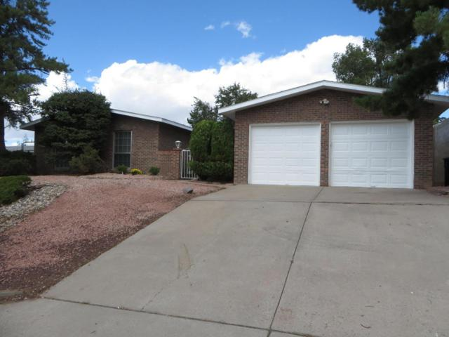 12011 Palo Duro Drive NE, Albuquerque, NM 87111 (MLS #901702) :: Campbell & Campbell Real Estate Services