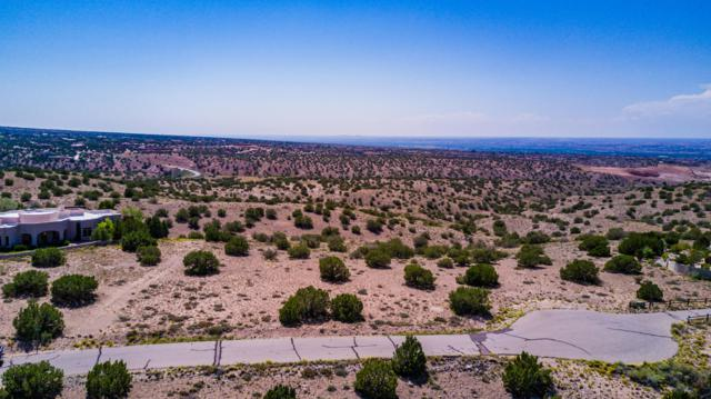 Calle Pinon, Placitas, NM 87043 (MLS #902064) :: Campbell & Campbell Real Estate Services