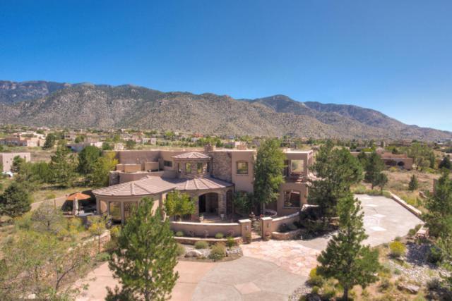 13512 Desert Zinnia Court NE, Albuquerque, NM 87111 (MLS #902775) :: Your Casa Team