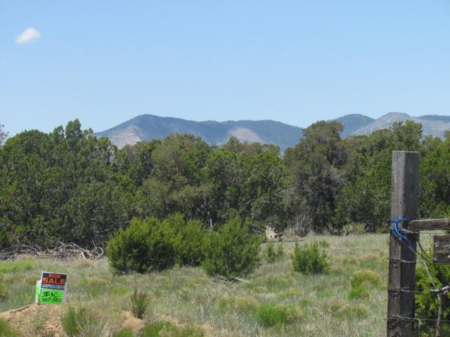 Heart Rock Road, Mountainair, NM 87036 (MLS #902961) :: Campbell & Campbell Real Estate Services