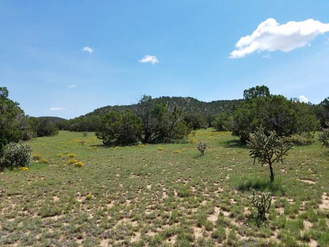 62 Mangas Trail, Mountainair, NM 87036 (MLS #903287) :: Berkshire Hathaway HomeServices Santa Fe Real Estate