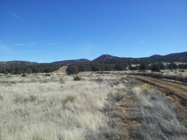 Webb Ranch Road, Pie Town, NM 87827 (MLS #903974) :: The Buchman Group