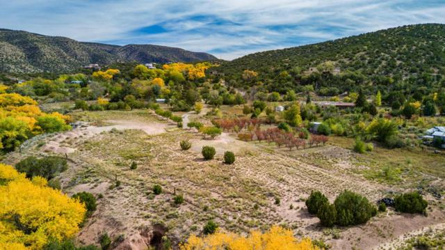 Paseo De San Antonio, Placitas, NM 87043 (MLS #904106) :: Rickert Property Group