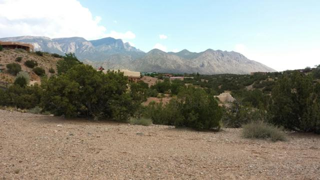 Pueblo Road, Placitas, NM 87043 (MLS #904107) :: The Bigelow Team / Red Fox Realty