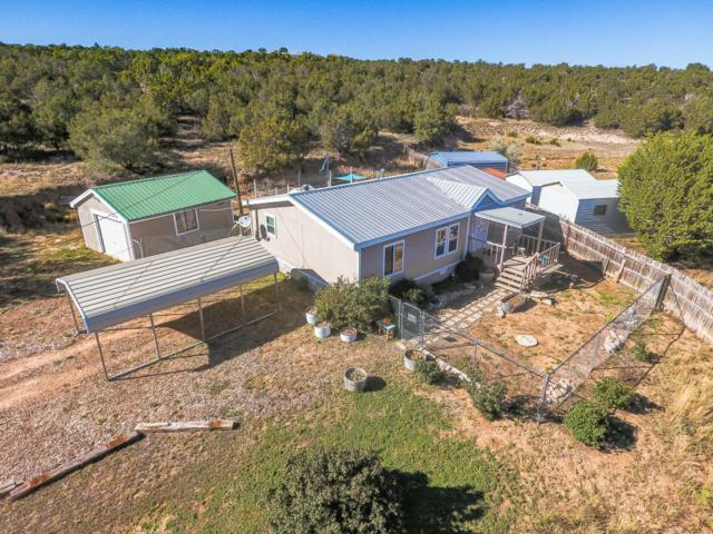 1 Barbara Lane, Edgewood, NM 87015 (MLS #904168) :: Campbell & Campbell Real Estate Services