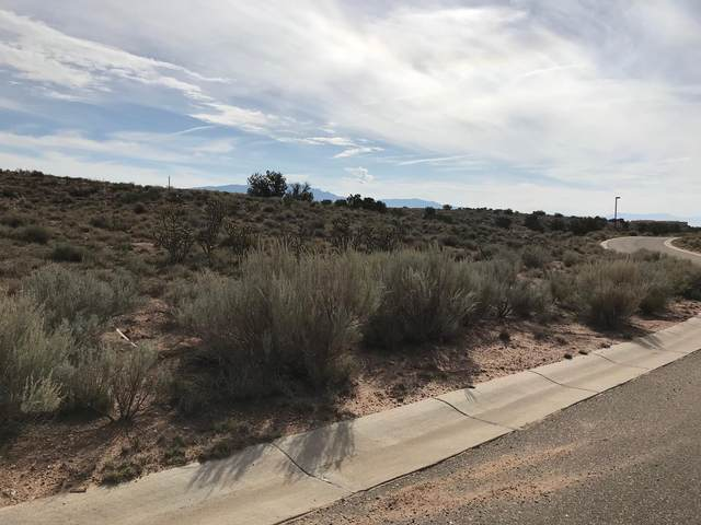Rooster Point Road NE, Rio Rancho, NM 87144 (MLS #904350) :: The Buchman Group
