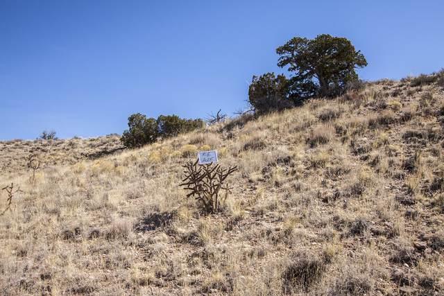 6001 Ridgeline Place NE, Rio Rancho, NM 87144 (MLS #904354) :: The Buchman Group