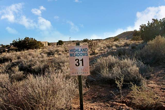 Upland Meadows Road NE, Rio Rancho, NM 87144 (MLS #904356) :: The Bigelow Team / Red Fox Realty