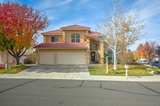 11112 Woodmar Lane NE, Albuquerque, NM 87111 (MLS #904375) :: Rickert Property Group