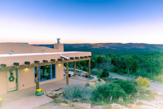 50 Calyx Lane, Cedar Crest, NM 87008 (MLS #904688) :: Campbell & Campbell Real Estate Services