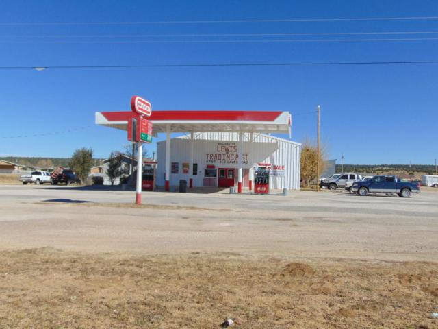 4797 Ice Cave Road, Ramah, NM 87321 (MLS #905111) :: Campbell & Campbell Real Estate Services