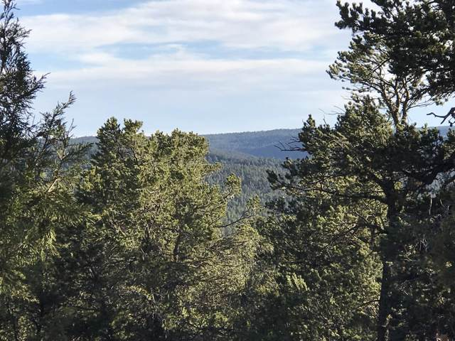 49 Andromeda Lane, Tijeras, NM 87059 (MLS #905529) :: The Bigelow Team / Red Fox Realty