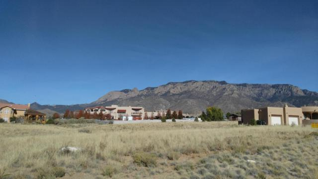 San Francisco Road NE, Albuquerque, NM 87122 (MLS #906191) :: Your Casa Team