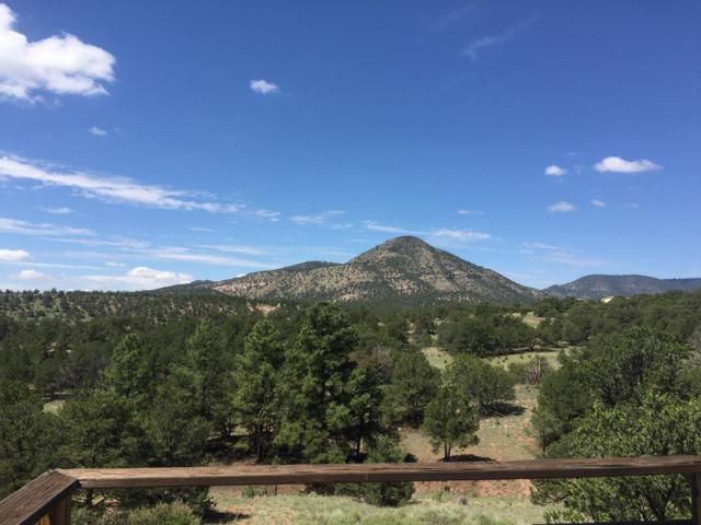 17 Pinon Drive, Datil, NM 87821 (MLS #906626) :: Silesha & Company