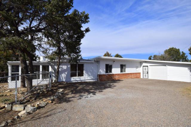 47 Woodland Drive, Tijeras, NM 87059 (MLS #906641) :: Will Beecher at Keller Williams Realty