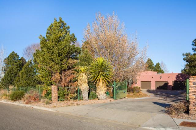 12005 San Antonio Drive NE, Albuquerque, NM 87122 (MLS #907040) :: Your Casa Team