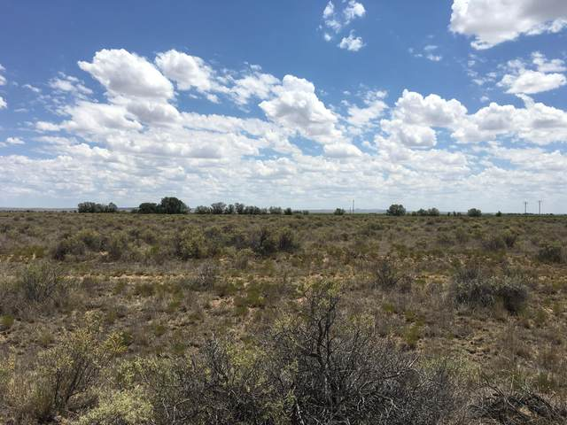 210 Valle Verde, McIntosh, NM 87032 (MLS #907064) :: The Buchman Group