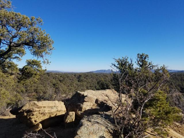 Ph2 Lot 53 Wild Horse Ranch, Pie Town, NM 87827 (MLS #907323) :: Campbell & Campbell Real Estate Services