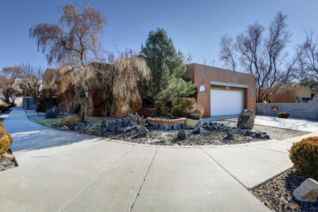 6216 Pojoaque Drive NW, Albuquerque, NM 87120 (MLS #907667) :: Your Casa Team