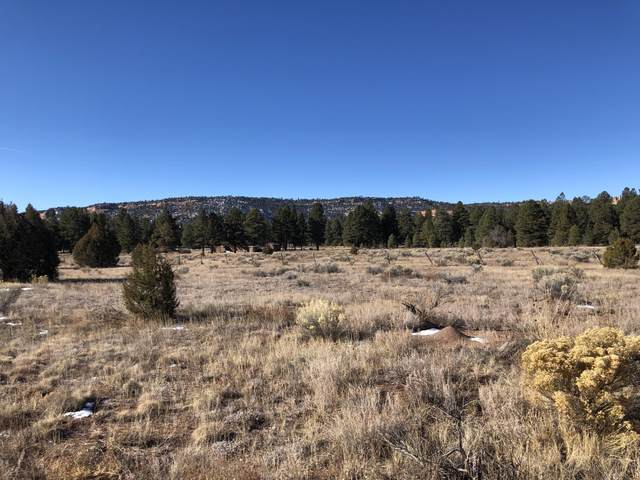 Lot 1 Ash - Unit 2 Block 5 Drive, Ramah, NM 87321 (MLS #910003) :: The Buchman Group