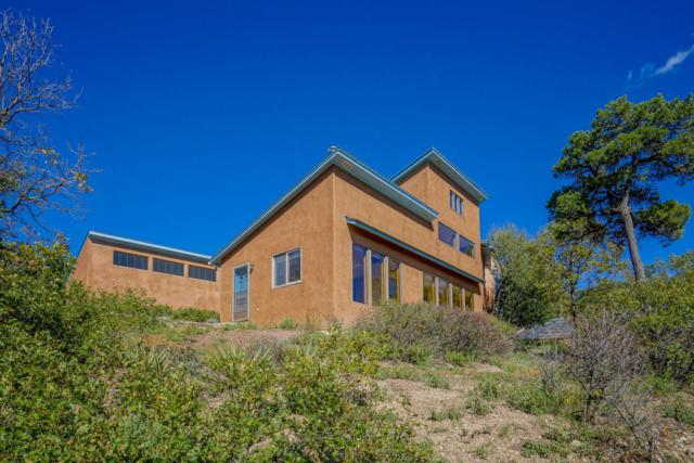 15 Little Dipper Road, Tijeras, NM 87059 (MLS #910189) :: Will Beecher at Keller Williams Realty