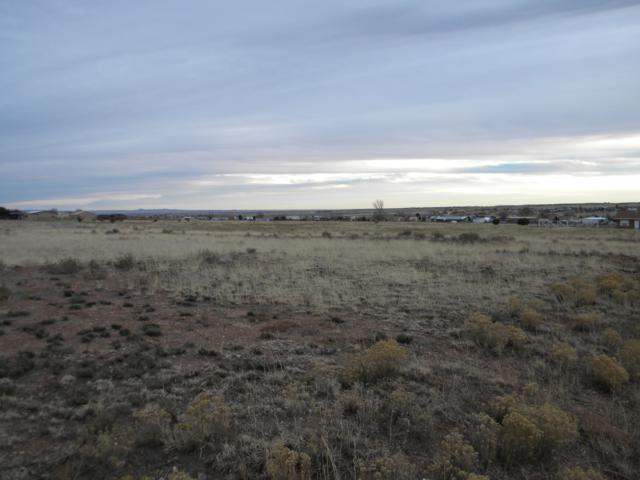 2 Blanco Drive, Edgewood, NM 87015 (MLS #910543) :: Campbell & Campbell Real Estate Services