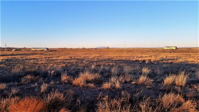 Palomino Drive, Lot 34, Moriarty, NM 87035 (MLS #910751) :: The Bigelow Team / Red Fox Realty